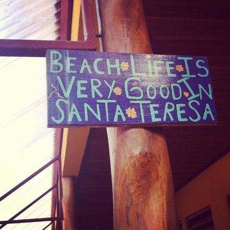 Casa Zen Guest House & Yoga Center: beach life is excellent here!