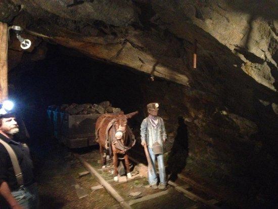 Lackawanna Coal Mine Tour: Great tour