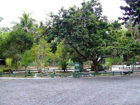 Parque Ecologico Do Corrego Grande