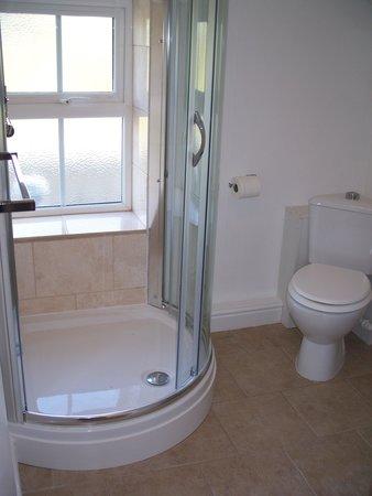Trevian Lodge B&B: Shower in Private Bathroom