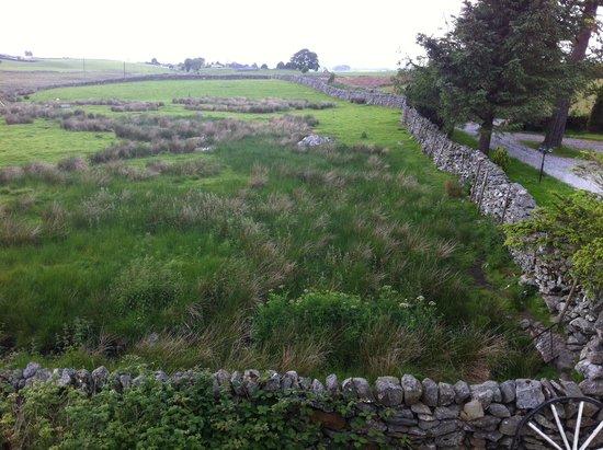 Llwyn Onn Guest House: Peacefull