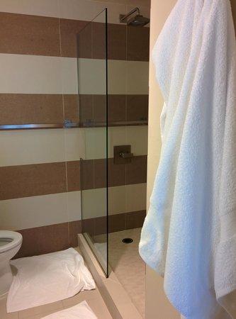Hotel Rose - A Staypineapple Hotel: Shower
