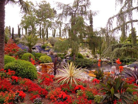 Flor og Fjære: fargesprakende hage