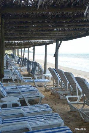 Club Med Trancoso : Região da Praia
