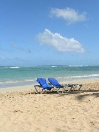 Sirenis Punta Cana Resort Casino & Aquagames: La playa