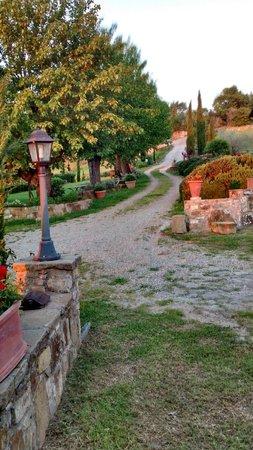 Agriturismo Podere Felceto: O caminho tipicamente Toscano
