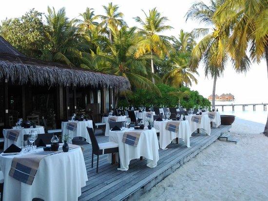 Mirihi Island Resort: dinner