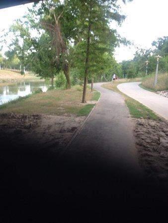 Allen Parkway Loop: Path under bridge.
