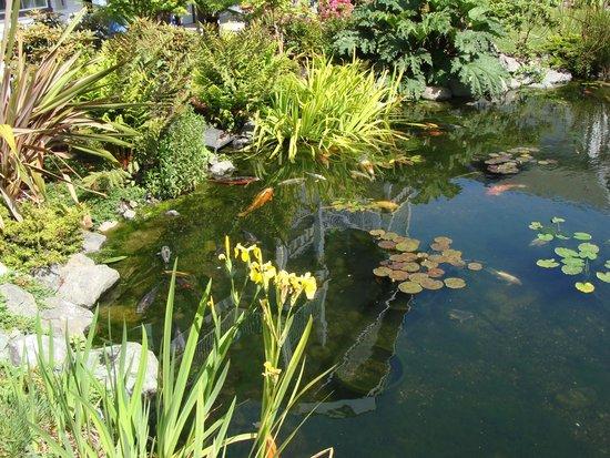 Best Western Plus Bayshore Inn: Beautiful pond