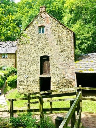 Wyre Forest : THE MILL