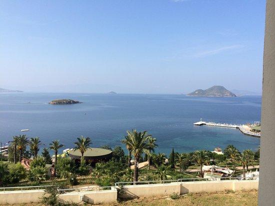 Yasmin Resort Bodrum : Cahit