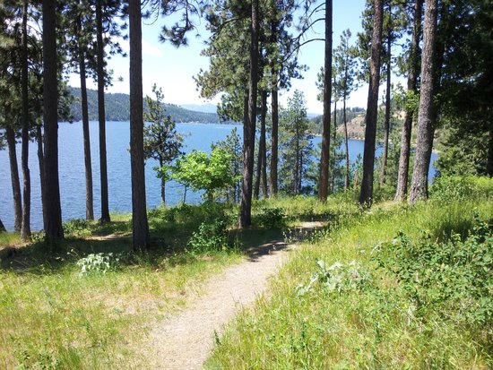 North Idaho Centennial Trail: View from Higgens Point