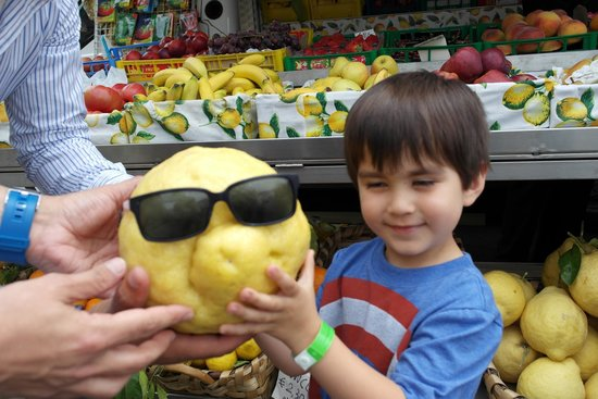 Sorrento Silver Star Tours: Lemons as large as your head!