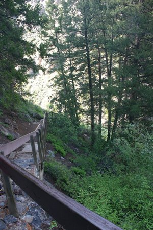 Red Arrow Inn & Suites: Gunnison River area trail