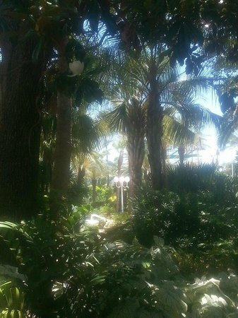 Moody Gardens Hotel Spa & Convention Center: Grounds