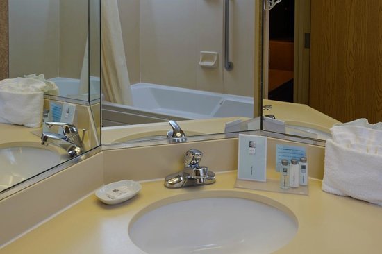 Hampton Inn & Suites Goodyear: Guest bathroom