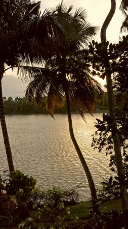 The Raviz Resort and Spa, Ashtamudi: Sunset view from the lobby
