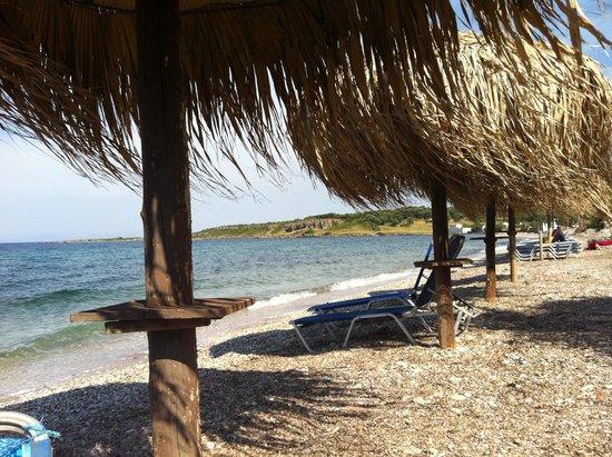 9 Musses Hotel and Studios: La spiaggia davanti all hotel 9 musses