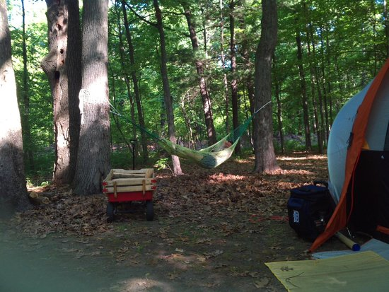 Yankee Springs Recreation Area State Park: More of the Campsite
