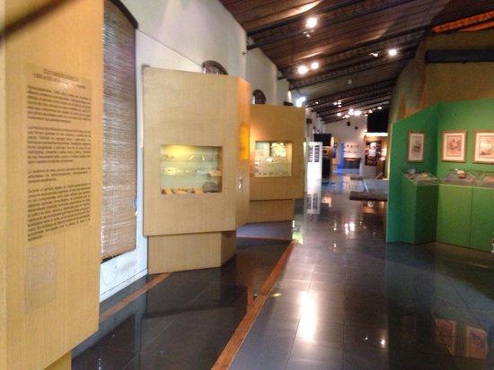 Museo Fundacional: Vista parcial da exposição.