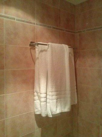 The Alfred Hotel: Banheiro