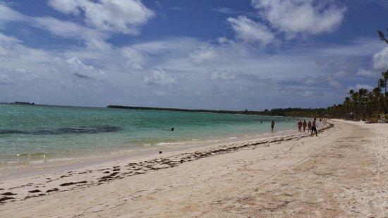Barcelo Bavaro Beach - Adults Only : beachfront