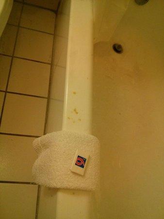 Motel 6 Rockford: Toilet