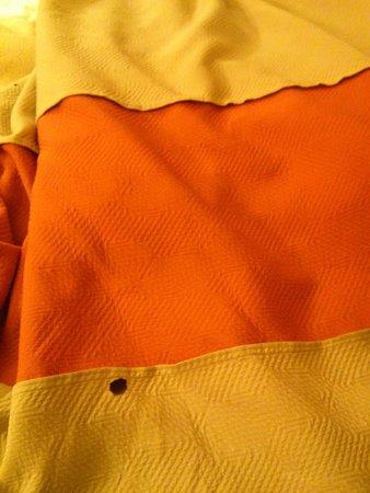 Motel 6 Rockford: Burn holes