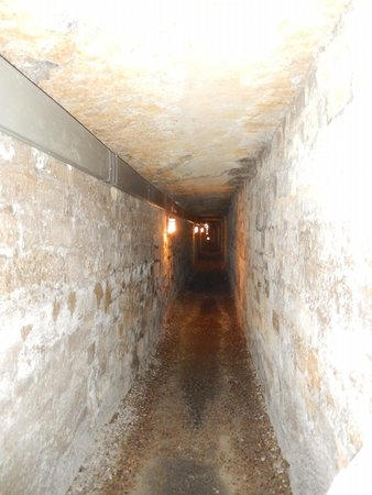 The Catacombs of Paris: Catacombs pic 1