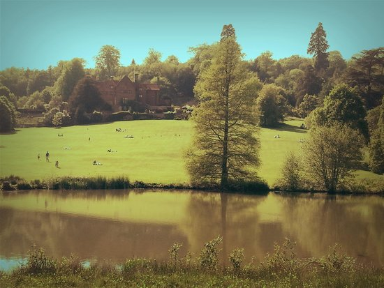 Chartwell: Parco