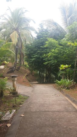Popa Paradise Beach Resort : The path to the casitas from the main lodge