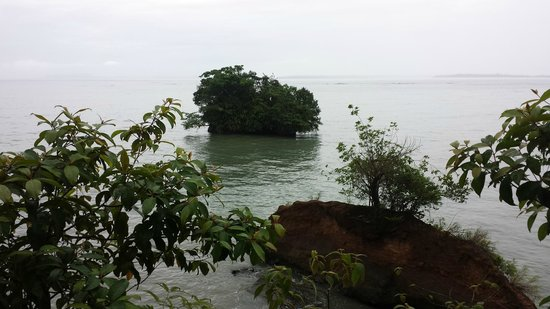 Popa Paradise Beach Resort : From a hill close to the beach