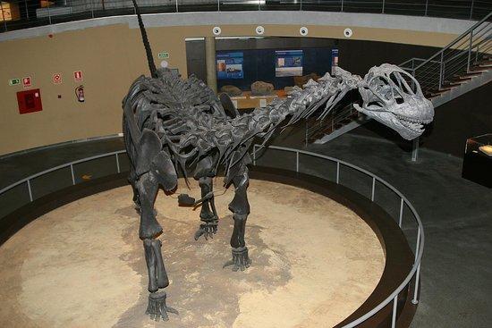 Museo Jurásico de Asturias MUJA: Museo Jurasico de Asturias