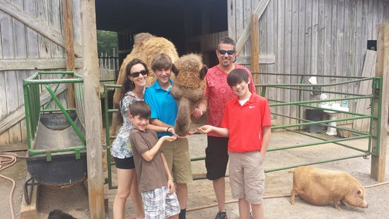 Circle G Ranch: Wild Animal Park & Camel Safari: Snack Time