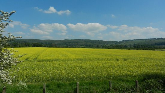 Gloucestershire Warwickshire Steam Railway: View from the train
