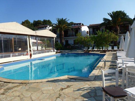 Villa Rosa Apartments : poolside