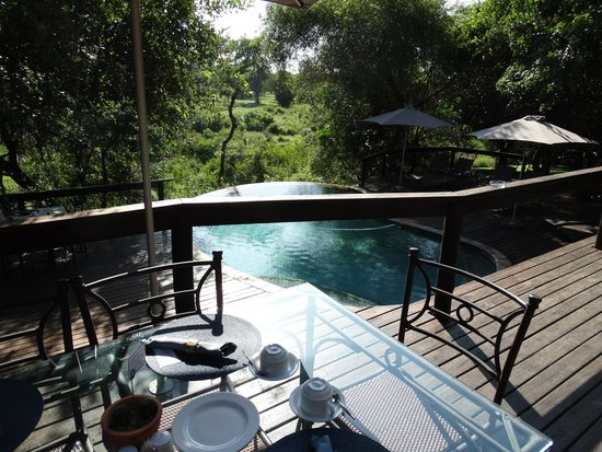 Elephant Plains Game Lodge : View from the Observation Deck