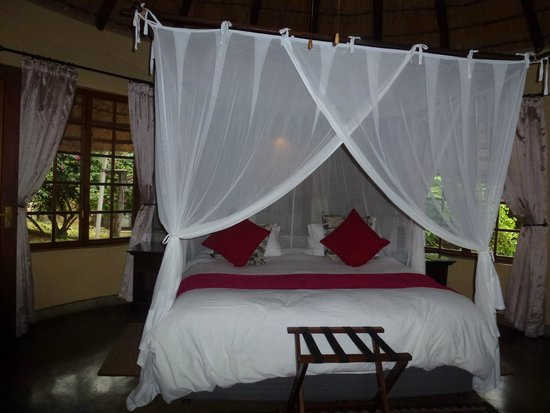 Elephant Plains Game Lodge: Our room
