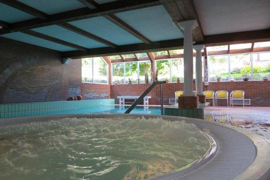 Sporthotel Tyrol Dolomites : piscina