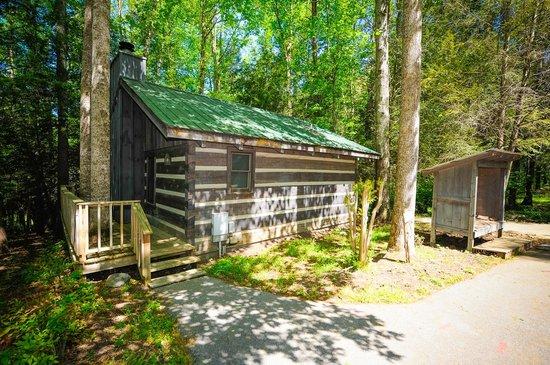 Dancing Bear Lodge: Elkmont Cabin