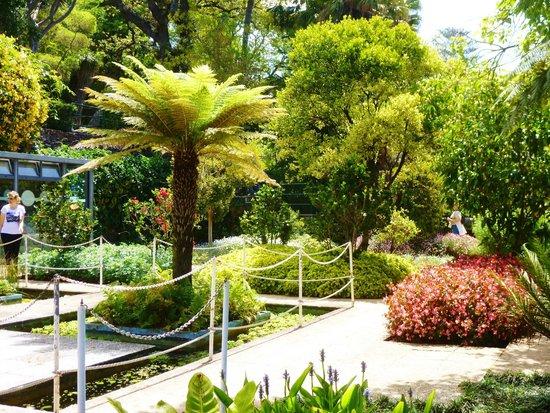 Madeira Botanical Garden : water terrace