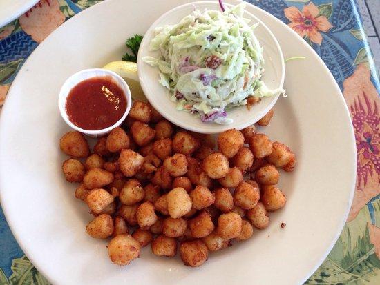 Sea Harvest Fish Market & Restaurant : Scallops and cole slaw