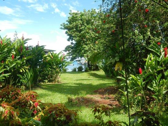 Bonjouir Lodge Paradise Pension: Le jardin