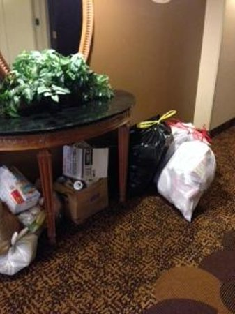Ramada Englewood Hotel & Suites: Classy!  The hallway was apparently a great place for the cleaning crew to leave trash
