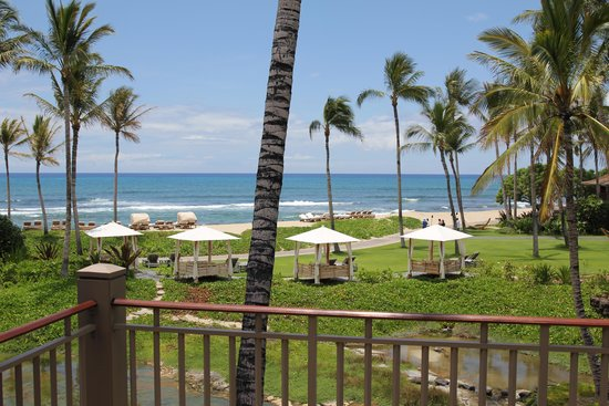Four Seasons Resort Hualalai : View from the room