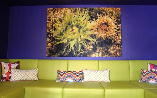 Hotel Zed: Cool anemone print and lounge couches