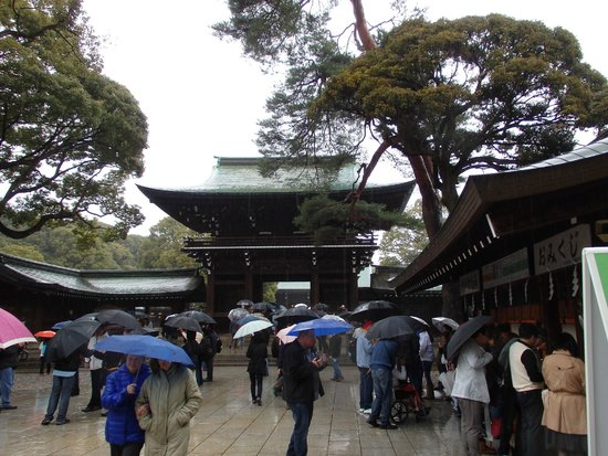 Meiji Jingu Shrine: Yup, that's about it.