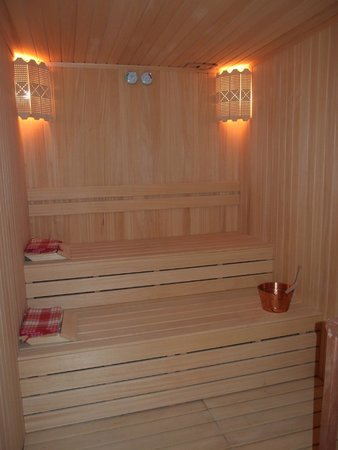 Crowne Plaza Istanbul Asia : sauna (in the room)