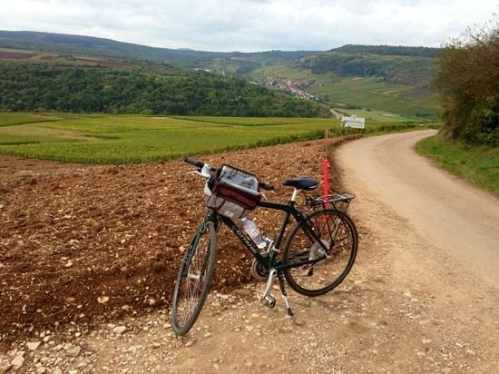 Bourgogne Randonnées : Cycling in Burgundy.