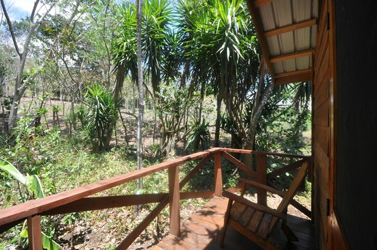 Mombacho Lodge: View from my porch